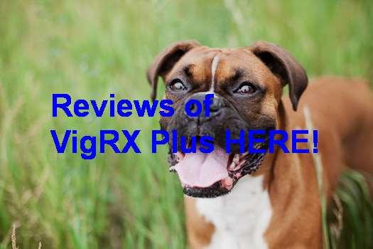 VigRX Plus Bioperine