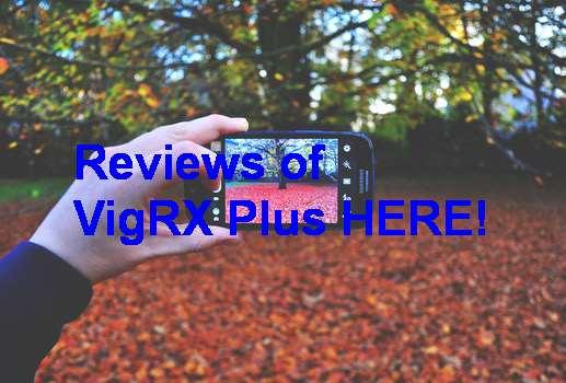 Pengedar VigRX Plus Di Malaysia