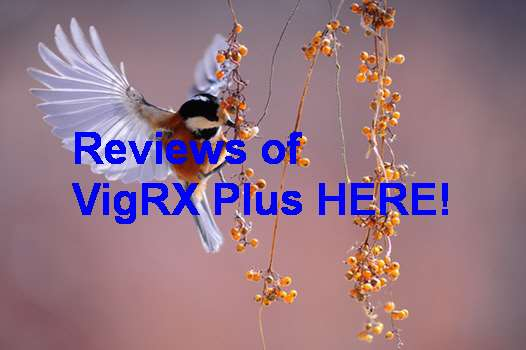 VigRX Plus Official Site Uk