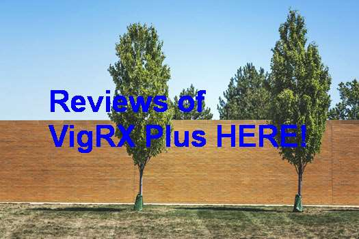 VigRX Plus Buy One Get One Free