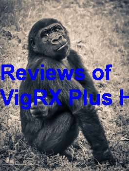 Where To Buy VigRX Plus In Mauritius
